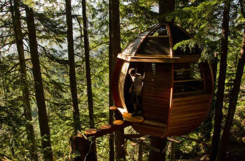 Egg-Shaped Tree House is Secretly Nestled in Canada's Woods