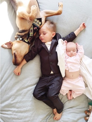 Adorable Baby Sister Joins Famous Toddler and Puppy for Daily Naps