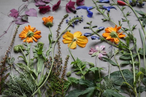 """Artist Casts Beautiful Blooms to Create """"Fossils"""" of Everyday Life"""