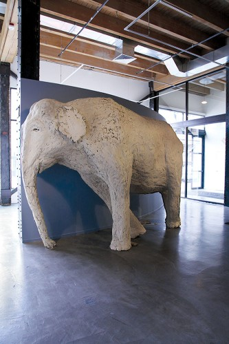 Enormous Wet Clay Animal Sculptures by Shay Church