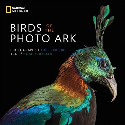 Photographer Captures Brilliant Bird Portraits to Help Save Endangered Species