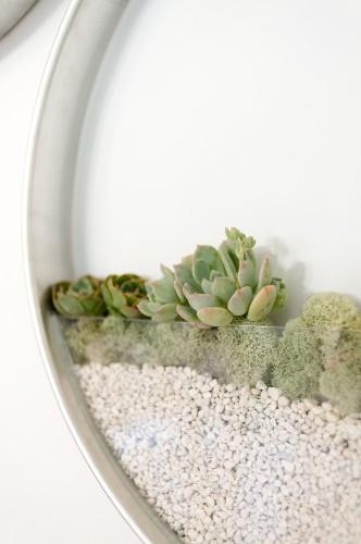 Sleek Vertical Planters Let You Grow an Elegant Garden Indoors