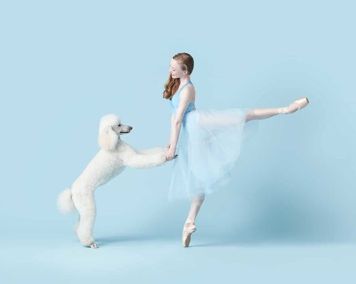 Professional Dancers Pose with Adorable Pups in Unique Photoshoot