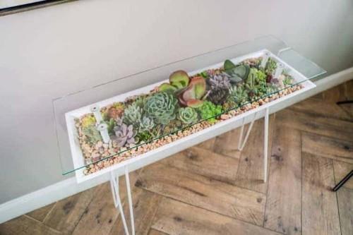 Esta elegante mesa también puede ser un hermoso jardín de suculentas