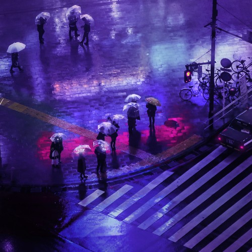 Sleepless City Streets of Rainy Tokyo Nights Lit by Electric Neon Signs
