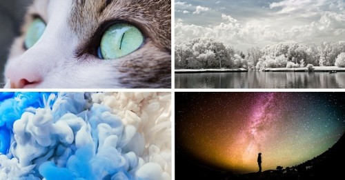 12 Photography Projects to Stretch Your Skills, One Month at a Time