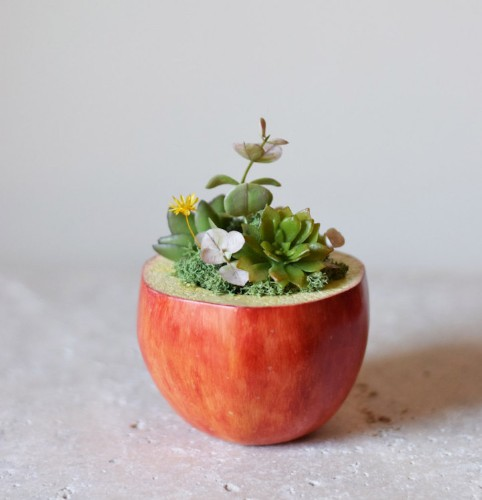 Charming Planters with Sweet Smiles Carry Bright Blooms on Their Backs