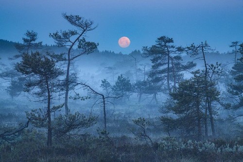 """Enchanting Photos Capture the """"Blue Hour"""" Between Night and Day"""