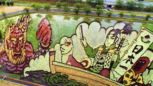 Japanese Village Grows Epic Rice Paddy Art to Boost Tourism