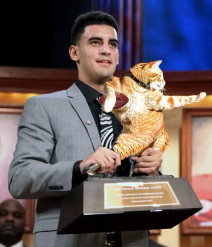 Redditors Reimagine Photo of a Flexible Cat in Hilarious Photoshop Battle