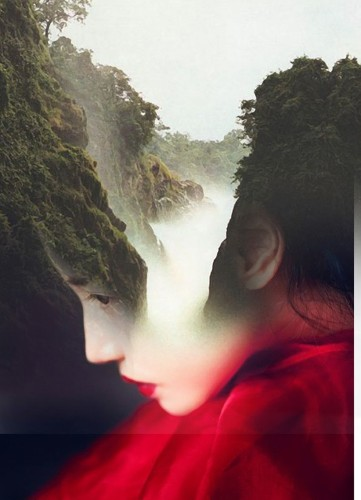 Unusual Pairings Beautifully Blend into Dreamlike Portraits