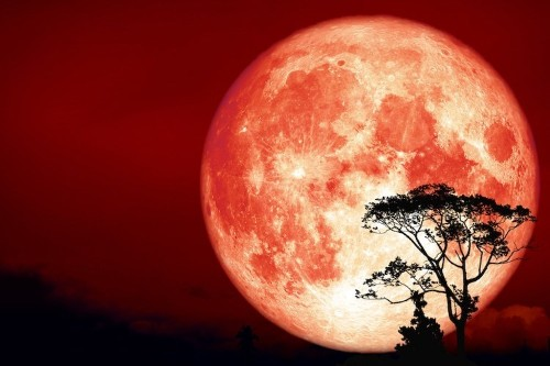 Bright and Fiery 'Full Hunter's Moon' Will Be Visible This Weekend