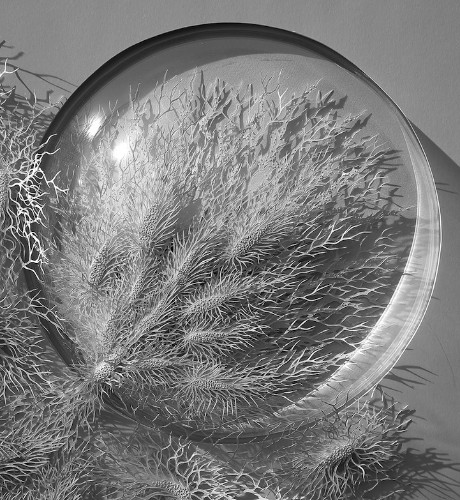 Delicately Hand-Cut Paper Sculpture Showcases the Microbiological Sublime