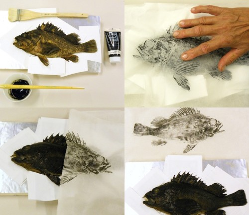 Gyotaku: The Traditional Japanese Art of Painting Marine Life with Actual Fish