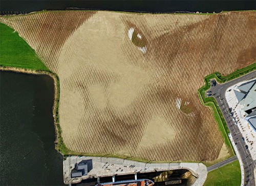 8 Million Pounds of Soil Shaped Into Huge 11-Acre Portrait