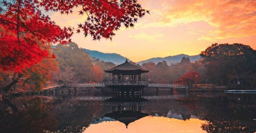 """Photographer Captures Amazing Photos of Japan While on """"Bullet Tour"""""""