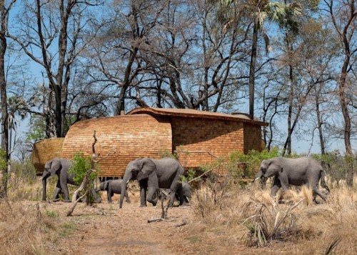 Solar-Powered Safari Lodge Provides the Perfect African Escape in Nature