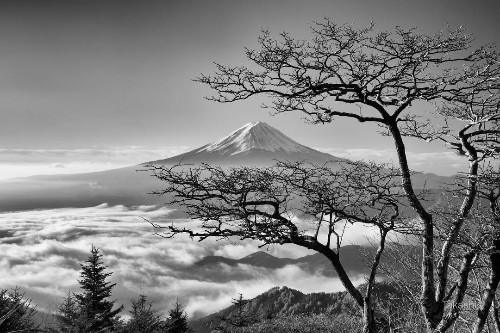 Photographer Captures the Mystifying Moods of Mount Fuji at Dawn