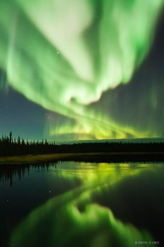 Dazzling Displays of Aurora Borealis Dance Across the Night Sky