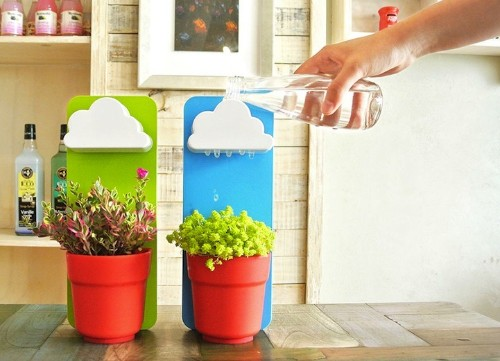 Adorable Little Clouds Delightfully Water Potted Houseplants