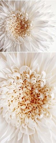 3-Foot Wide Stunning Textured Flowers Created Out of Paper