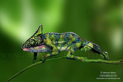Incredible Bodypainting of a Chameleon Consists of Two Women