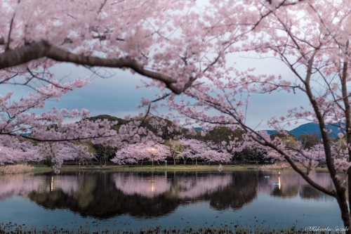 Gorgeous Landscapes Reveal the Idyllic Tranquility of Japan