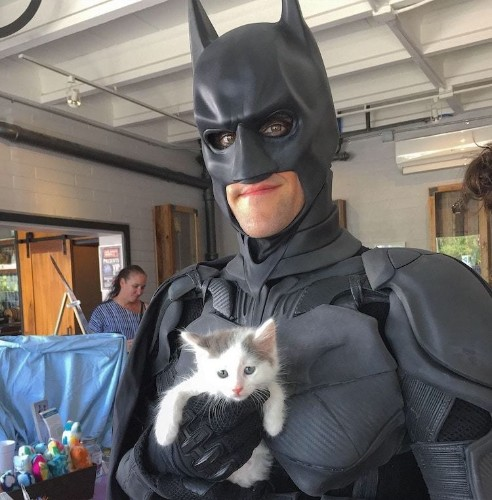 Man Dresses Up as Batman to Drive Rescue Animals to Fur-ever Homes