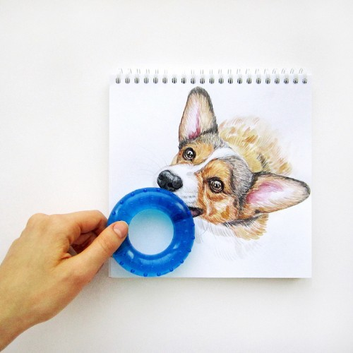 Adorable Illustrations of Dogs Interact with Real-World Objects