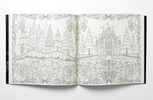 Enchanting Coloring Books for Grown-Ups by Johanna Basford