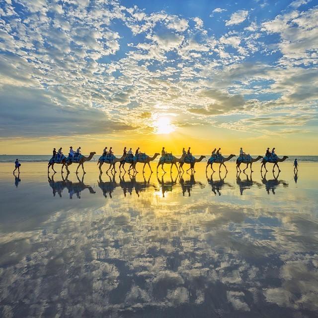 Spectacular Photos of a Camel Train Roaming Australia's Cable Beach
