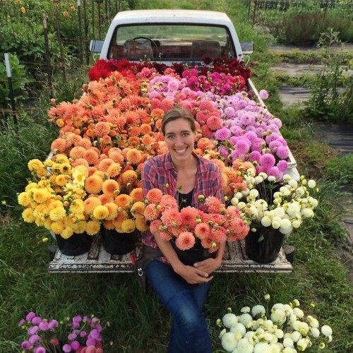 Photos Reveal the Abundance of Natural Beauty in the Life of a Dedicated Florist