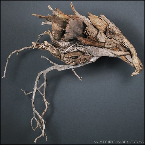 Sinuous Animal Sculptures Made Out of Foraged Wood and Metal Scraps