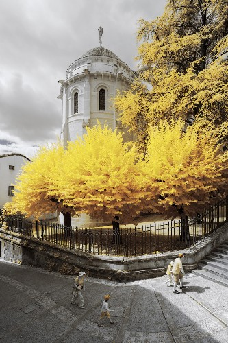 Vibrant Infrared Photos Make France Look Like an Alternate Universe