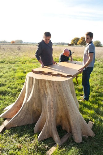 Raw Tree Stump Seamlessly Extends into a Polished Wooden Table