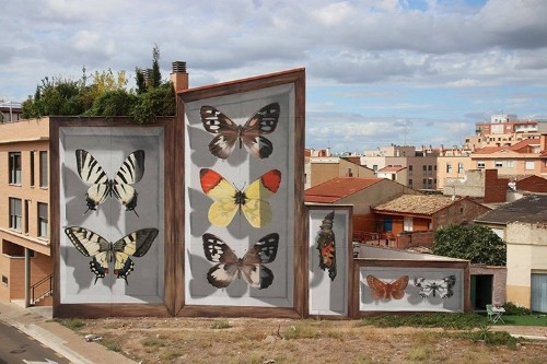 Street Artist Turns Buildings into Gigantic Butterfly Specimen Cases