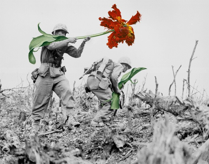 Striking Collages Replace Guns from Vintage Photos with Life-Size Flowers