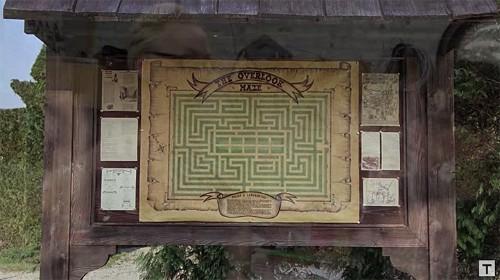 """MythBusters"" Co-Host Painstakingly Recreates Hedge Maze From ""The Shining"""