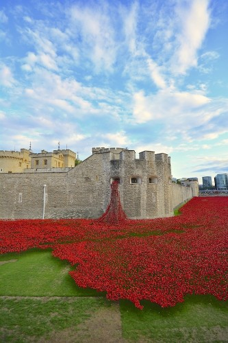 Stunning Installation of 888,246 Ceramic Poppies Honors Lives Lost in WWI