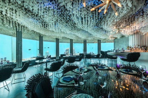Stunning Underwater Restaurant Lets Guests Dine next to Ocean Life