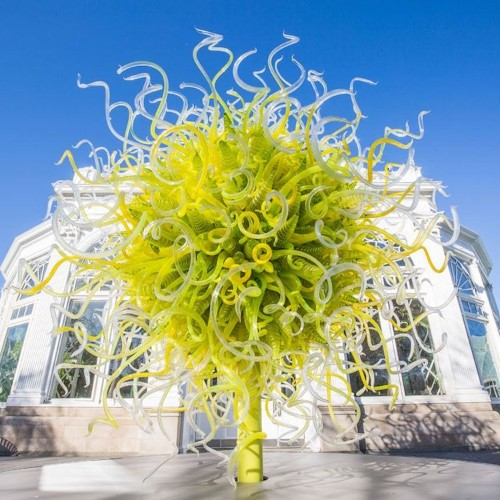 Chihuly's Colorful Glass Sculptures Sprout Up in the New York Botanical Garden