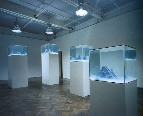 Dynamic Sculptural Landscapes Constructed Within Glass Aquariums