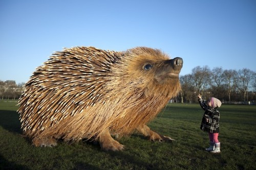 Giant Hedgehog Appears on London's Clapham Common