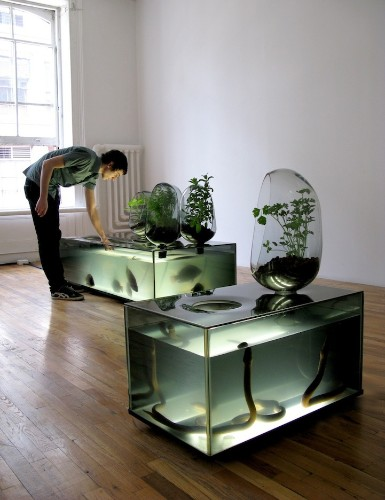 Amazing DIY Fish Tank Combined with Gardening Eco-System