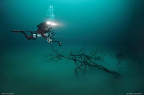 Hidden Underwater River Flows Along Mexico's Ocean Floor