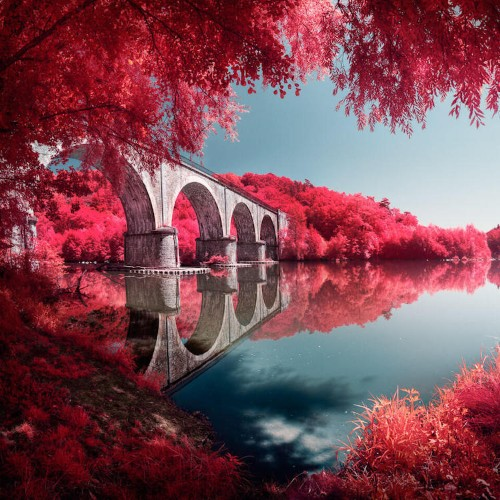 Infrared Lens Filter Successfully Mimics the Look of Kodak Aerochrome Film