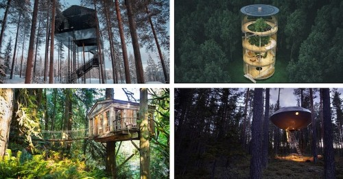 13 Stylish Treehouses for Grown-Ups to Spend a Night In