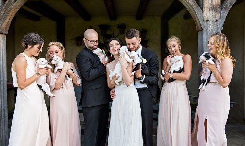 Wedding Archives