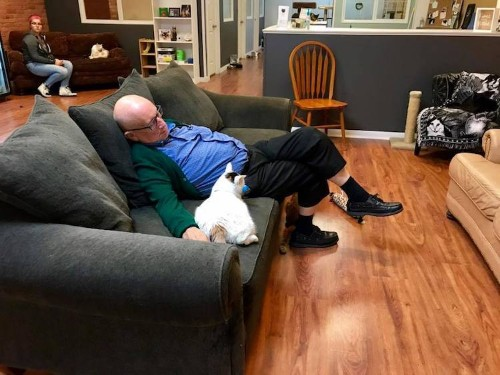 "Internet Loves Volunteer ""Cat Grandpa"" Who Naps With Shelter Cats"