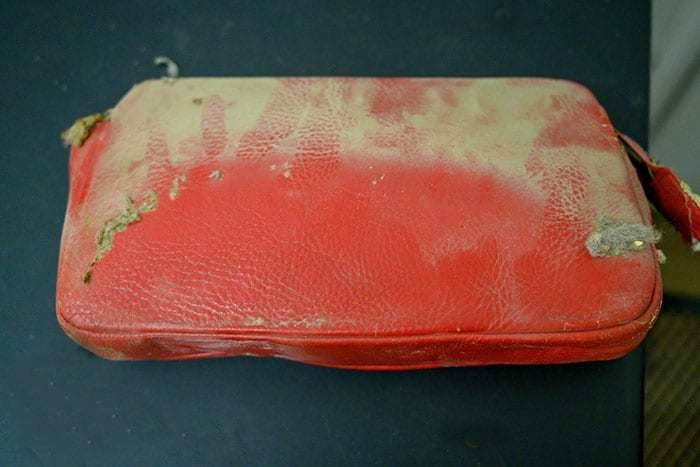 Purse Lost in the 1950s Becomes an Unexpected Time Capsule Revealing What Life Was Like Then